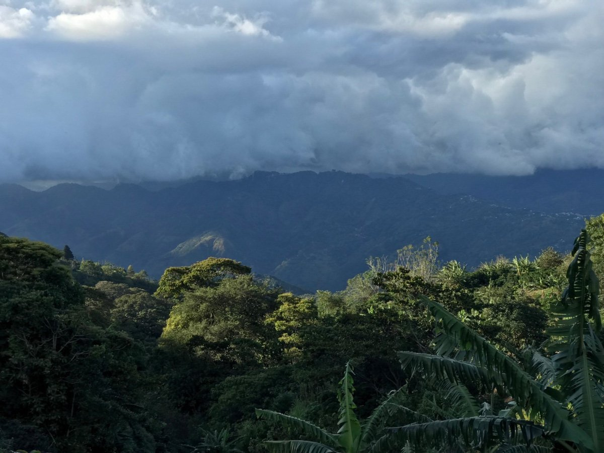 Коста-Рика Трес-Эрманас хани