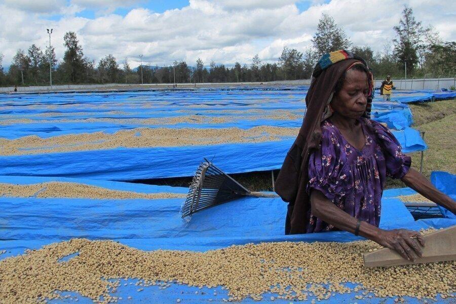 Кофе Папуа-Новая Гвинея Сигри, фото 6, цена