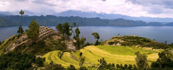 Индонезия Суматра Манделлинг
